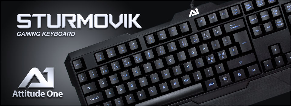 Sturmovik001
